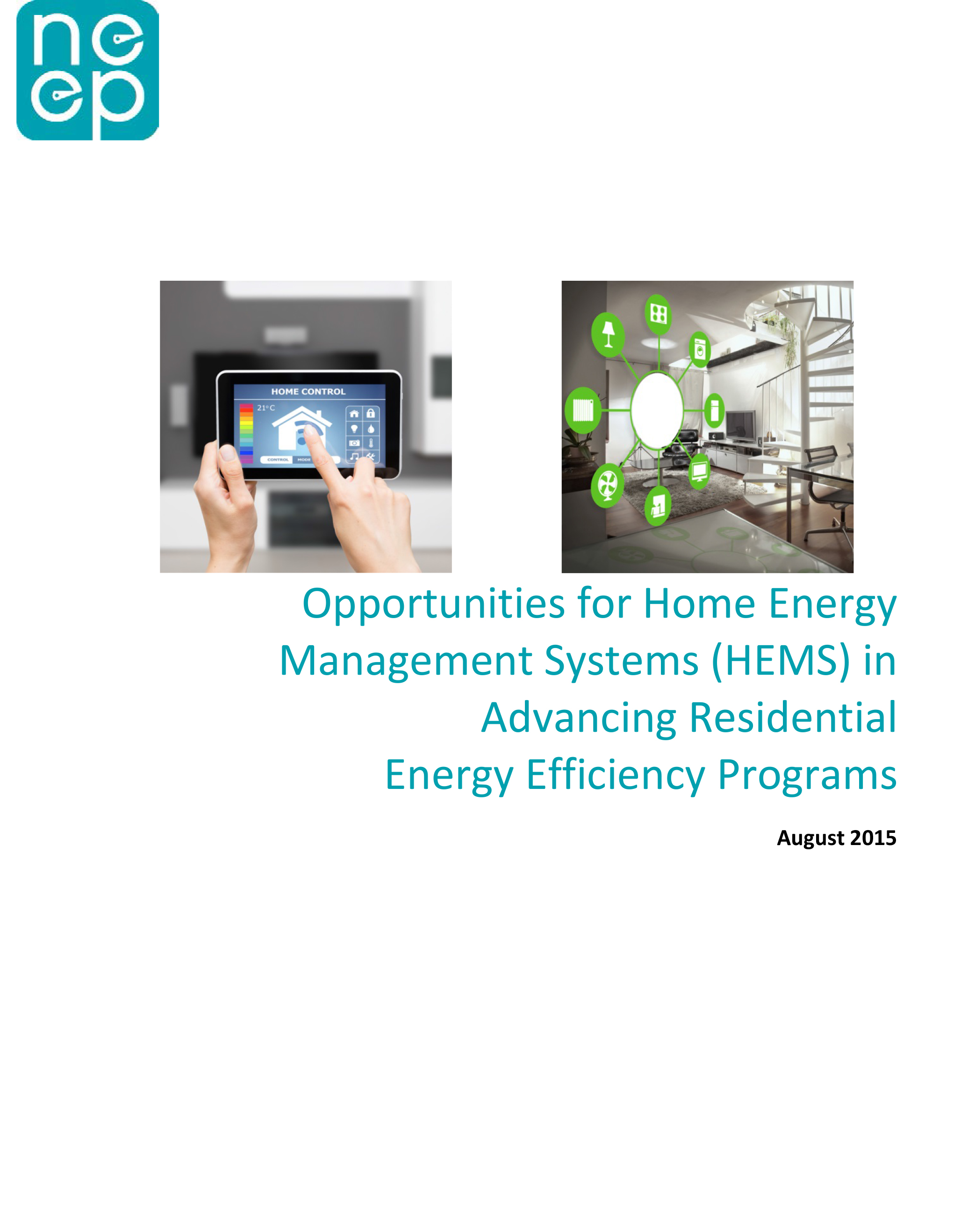 AMI, advanced metering infrastructure, grid modernization, reforming the energy vision, REV, home energy management, home energy management systems, SEE Action, smart meters