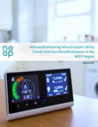 Advanced Metering Infrastructure - Utility Trends and Cost-Benefit Analyses in the NEEP Region